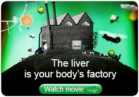 liver_factory